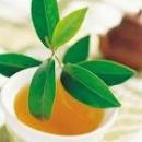 Uống trà xanh giảm ung thư buồng trứng