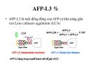 Alpha-Fetoprotein (AFP) và AFP-L3