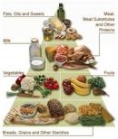 Dinh dưỡng và bệnh ung thư