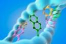 Enzym kháng virut gây đột biến gen