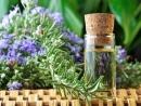 5 loại thảo dược dễ tìm có công dụng phòng bệnh ung thư