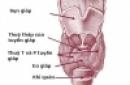 Điều trị bệnh cường giáp trạng và Basedow bằng i-ốt phóng xạ (I-131) có gây ra ung thư và các đột biến di truyền hay không
