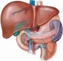 Ung thư gan - những điều cần biết