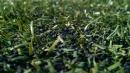 Phát hiện chất gây ung thư trên sân cỏ nhân tạo